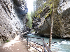 Hiking Johnston Canyon & Ink Pots (traceylikesyou) Tags: banff johnstoncanyon inkpots