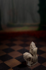 Out of the Forest (41/52) (ImGoingToAzerbaijan) Tags: fairytale forest board chess fairy knight wonderland magical tale stobist felthamuk
