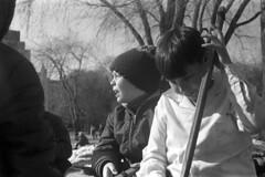 0209B69 28 (ndpa / s. lundeen, archivist) Tags: winter boy blackandwhite bw 1969 film boys boston 35mm children ma blackwhite child massachusetts nick lagoon 1960s february beaconhill publicgarden hockeyplayer dewolf hockeystick hockeyplayers pondhockey nickdewolf photographbynickdewolf alexandermcintyre