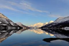 Sørfjorden i Ullsfjord (John A.Hemmingsen) Tags: sun mountains reflections landscape ullsfjord troms nikond600 sigma35mm14dg