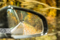 Autumn In My Mirror (Cristian Sabau) Tags: auto road trip travel autumn trees motion black blur reflection fall nature lines car yellow rural speed forest square landscape freedom drive mirror countryside view ride traffic outdoor side country go rear transport scenic free fast move foliage reflect transportation romania freeway asphalt sideview transylvania leafs speeding wwwcristiansro