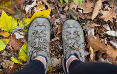 20131026-Vermont-40 (Laurel Tracy) Tags: mountains fall woods vermont autum hiking pumpkins chester vt hikingshoes ltworldtour ltsnapshots