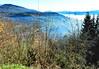 au dessus de MUNSTER  29  les VOSGES,  Beaute et Paysages de notre belle France, Guy Peinturier (GUY PEINTURIER) Tags: vairessurmarne beautedefrance guypeinturier bellefrance paysagesdefrance peinturierguy