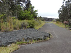 End of the Road (Anita363) Tags: road rock hawaii lava hi bigisland hawaiivolcanoesnationalpark basalt chainofcratersroad maunaulu