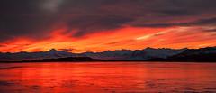 At sunset in Djupivogur (*Jonina*) Tags: sunset sky reflection clouds iceland pond sland sk himinn tjrn speglun djupivogur djpivogur 10000views slsetur explored 7000views 12000views 11000views 300faves 400faves jnnagurnskarsdttir