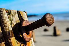 (Damien Cox) Tags: wood uk blackandwhite beach metal nikon rust westsussex grain rusty elmer bognorregis damiencox dcoxphotographycom