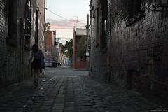 Into the Light (Ranga 1) Tags: urban girl canon candid fitzroy australian streetphotography australia melbourne victoria explore lane suburbs cinematic urbanlandscape davidyoung lowlightphotography innersuburbs innermelbourne ef24105mmf4lusm canoneos5dmarkii