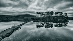Derryclare Lough (fearghal breathnach) Tags: bw reflection water clouds canon reflections landscape photography dawn photo blackwhite day cloudy photos wideangle connemara tones ultrawide 1022 gcc derryclare efs1022 fearghalbreathnach canonefs1022 derryclarelough greystonescameraclub httpswwwfacebookcomfergphotos