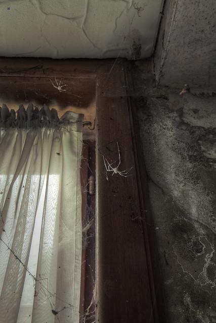 maison de la grande georges bedroom window