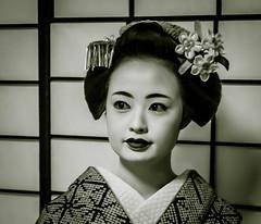 The Maiko Katsumi (2011) (dckyoto) Tags: kyoto maiko geiko geisha kimono gion shibori katsumi