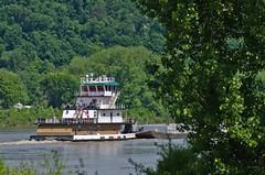 CHERYL LEE SETTOON (Joe Schneid) Tags: kentucky transportation louisville towboat inlandwaterway inlandwaterways americanwaterways ohiorivermile619 cherylleesettoon