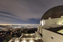 L.A. nights