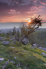 Chedder Gorge on the edge sunset_ (Si Photography) Tags: sunset red sky sun simon grass set clouds canon landscape photography evening rocks sheep si goats gorge profesional chedder 600d maidment