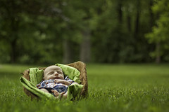 Addison (Brian-D) Tags: boy baby canon photography 50mm infant pennsylvania brian central newborn carlisle demeester briand 50d