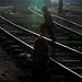 চিরন্তন প্রত্যুষা -- tale of a timeless dawn ............ chandpur 2013 copyright:abdul malek babul