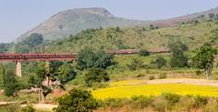 Scenic DBK railway nr Araku (ashok kolluru) Tags: vizag india