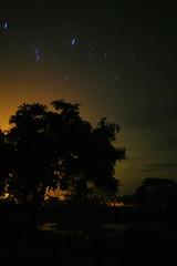 _SAM0611 (LuisK) Tags: largaexposicin libre luz luces noche campo paisaje sombras siluetas vegetacion