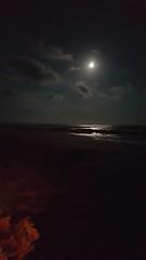 HIOC 16 (thenewclassy) Tags: outerbanks obxnow hioc hatteras hatterasisland ghostcrabs smores crabs crabbing beach beaches ocean oceancenter bonfire campfire beachbonfire beachcampfire constellations stars moon fullmoon northcarolina travel travelblogger cheapisthenewclassy