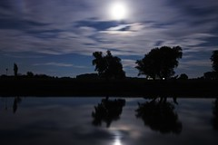 Moonlight in the night (M a u r i c e) Tags: moon light moonlight efs1022mm wideangle ultrawidezoom netherlands river reflections ijssel brummen trees silhouettes cloudy clouds blue sky night