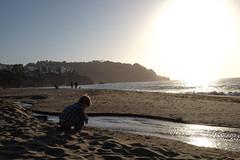 young man and the sea (basicallybearlion) Tags: child people beach baker bakerbeach sanfrancisco bayarea kid youth sea ocean water landscape