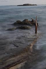 Ses salines sunset (carlos.pazos12) Tags: ibiza agua suave movimiento rama arbol anochecer