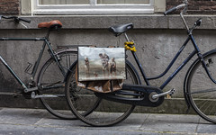 Bicycle Art (Pieter Musterd) Tags: fiets fietstas kunst art denhaag pietermusterd musterd canon pmusterdziggonl nederland holland nl canon5dmarkii canon5d 'sgravenhage thehague zuidholland paysbas thenetherlands niederlande haagspraak hofkwartier damesfiets herenfiets oudemolstraat