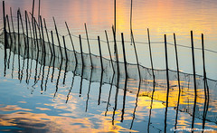 Fishing net (Ignacio Ferre) Tags: spain espaa valencia albufera albuferanaturalpark red pesca pez sunset atardecer net fishingnet fish fishing blue azul paisaje landscape amarillo yellow nikon ngc lalbufera