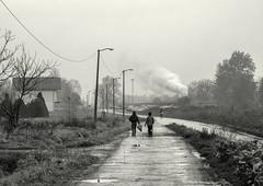 Lukavac Life - 2 (Kingmoor Klickr) Tags: lukavac tuzla bosniaherzegovina baureihe52 33064 kreka mines kreigslok industrial railway