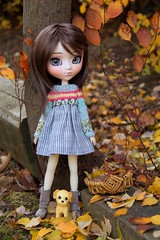 Amelia & Pilar play in the leaves (PurpleMacLove) Tags: pullip ddalgi amelia jun planning junplanning groove mohair wig rewigged monique jojo etsy dolloutfit dolldress doll photoshop dollwig kawaii brown autumn fall outdoors canon 60d adobe eos toyphotography eyechips kirakira yellow orange cangaway dollboots coolcat boots dolls toys
