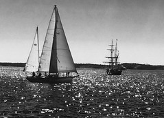 Sparkling sea (halifaxlight) Tags: canada novascotia lunenburg sailboat sailingship squarerigger sailing harbour sea backlit bw