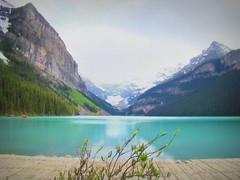 Enchanting Lake Louise (Rekha Prasad) Tags: banff rockymountain alberta banffnationalpark lakelouise torquoise lake turquoiselake canada beautifullandscapes canadianbeauty scenicplacesintheworld awesomescenery
