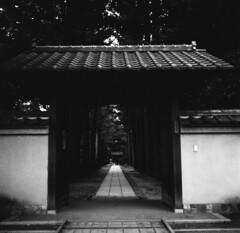 161023_ZenzaBronicaS2_010 (Matsui Hiroyuki) Tags: zenzabronicas2 nikonnikkorp75mmf28 fujifilmneopan100acros epsongtx8203200dpi