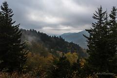 "Smoky Mountains ""Sunrise"" (John H Bowman) Tags: northcarolina swaincounty tennessee seviercounty ncmountains tnmountains parks nationalparks greatsmokymountainsnp newfoundgaproad newfoundgapoverlook dawn overcast cloudyskies fog october2016 october 2016 canon24704l explore"