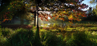 Bièvre d'automne (panorama)