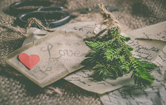 A month of Love... (Ayeshadows) Tags: love araucaria tree leaves baby jute cloth texture red heart scissors black old letter tag braid knot tied