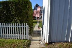 Enter America (roger901) Tags: flag gate fence walk sidewalk shrubbery