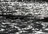 Reflection_0570 (Mike Head - Jetwashphotos) Tags: water bay reflection colorimage bwappearance mudbay boundarybay crescentbeach southsurrey surrey bc britishcolumbia canada westerncanada westernregion
