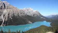 Peyto Lake (dbonny) Tags: peytolake banff banffnationalpark banffnp canada canadianrockies alberta albertacanada icefieldsparkway
