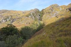 Tree lined gorge of Allt Coire na Ciche (Paul Sammonds) Tags: morar knoydart