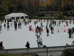 Central Park New York November 2016 (1232) (Richie Wisbey) Tags: new york central park manhattan ulmsted man made vista view spectacular miles walks lakes ice rink trump feeding sparrows hot dog american space open public beauty bow bridge oak trees grass richie richard wisbey flickr explore exploring zoo