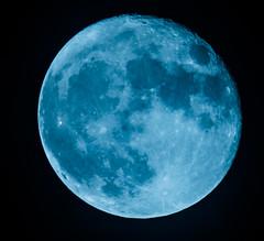 Blue moon (framir2014) Tags: bluemoon moon luna supermoon