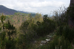 Day 3: Leaving Ponz on unused paths (Gregor  Samsa) Tags: italy italia spring april march easter nationalpark liguria ligury hike hiking walk walking cinqueterre cinque terre hill hills hilly exploration trip adventure outdoor outdoors path footpath woods forest