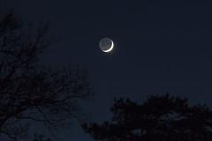 20161202_Lune cendre (Clapiotte_Astro) Tags: lune moon cendre canon700d canon70200mm night nuit