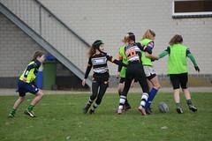 DSC_8896 (mbreevoort) Tags: rfchaarlem rugby rcthedukes brcbreda dioklrc thepickwickplayersdrc hookers goudarfc