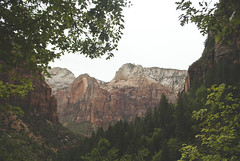 Zion National Park (meinthesnow) Tags: zion zionnationalpark usnationalparks usa utah trail emerald pools emeraldpoolstrail emeraldpools