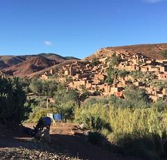 (NaomiQYTL) Tags: mountain landscape trekatlas highatlas atlasmountains atlas morocco holiday travel