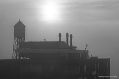 DSC_4554 (Peeperkorn Photography) Tags: kop van zuid rotterdam