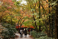 DSC02786 (MrSUIZOU) Tags: 京都 紅葉 北野天満宮 平野神社 十月桜