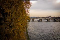 La Seine, Paris (J. Tang) Tags: seine paris france europe eurotrip fall bridge river riverbank cloudy foliage fujifilm fuji xt1 23mm