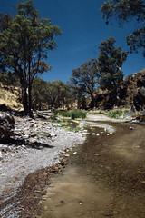 Road in the Flinders (Stefan Fisher) Tags: kodakektachrome minoltaxd7 scanned australia flindersranges nationalpark southaustralia outback oz downunder